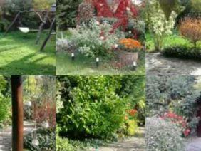 Acasă în grădină